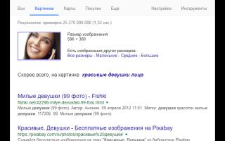 Система распознавания объектов на фотографии Google Lens доступна для любых смартфонов