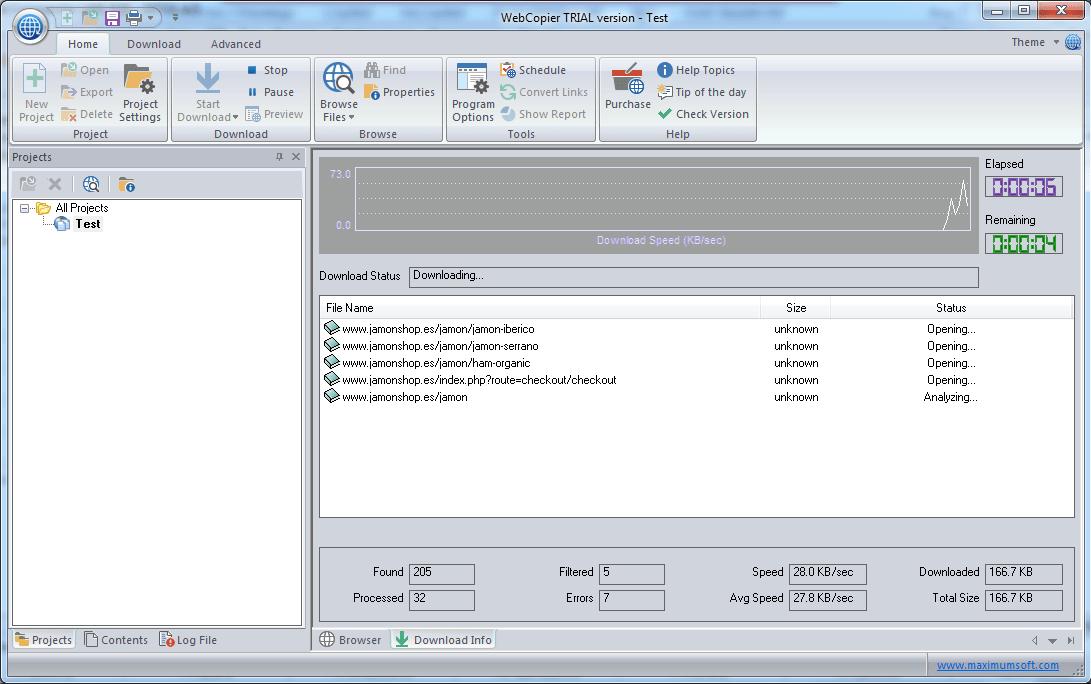 protsess-skachivaniya-sajta.png