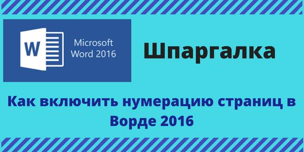Copy-of-SHpargalka-1.png