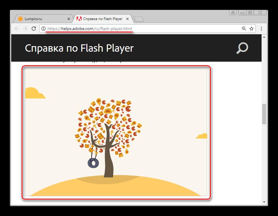 Flash-Player-v-Google-Chrome-funktsioniruet-normalno.png