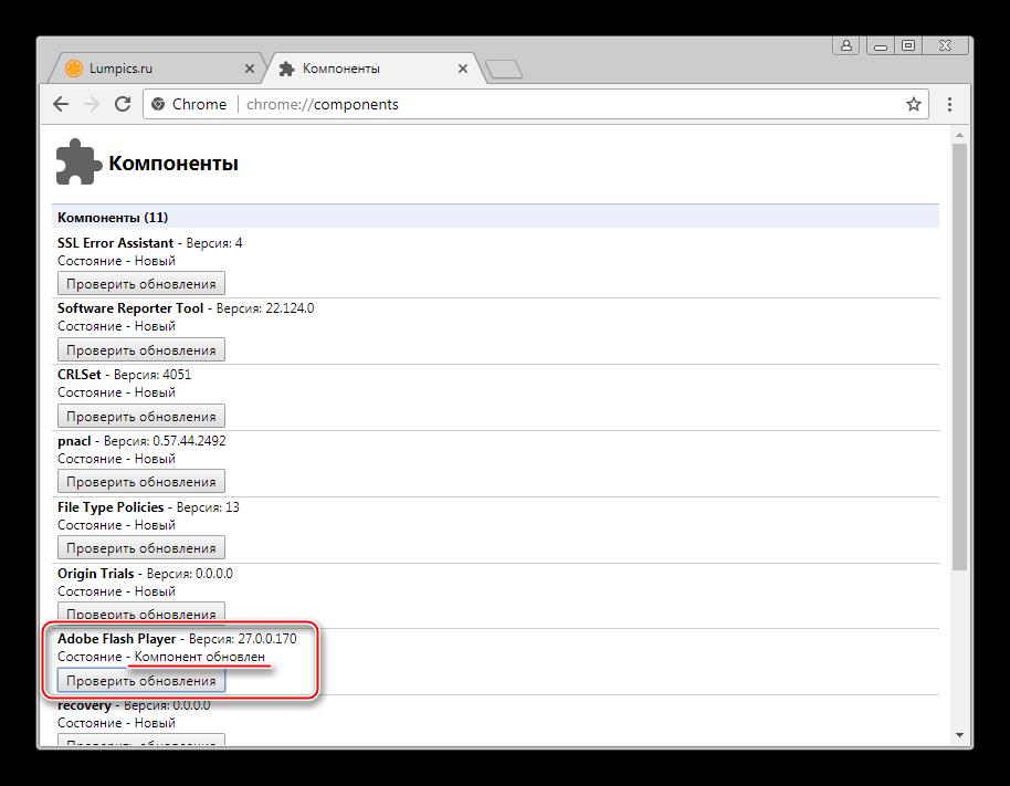 Flash-Player-v-Google-Chrome-ustanovlen-i-obnovlen.png