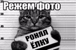 Rezhem-foto.png
