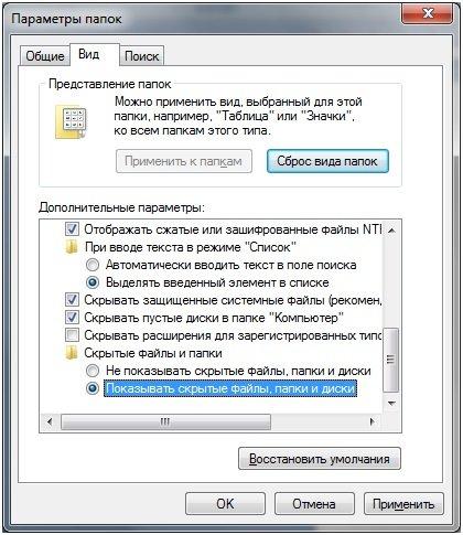 Nazhimaem-Pokazat-skry-ty-e-fajly-papki-i-diski.jpg