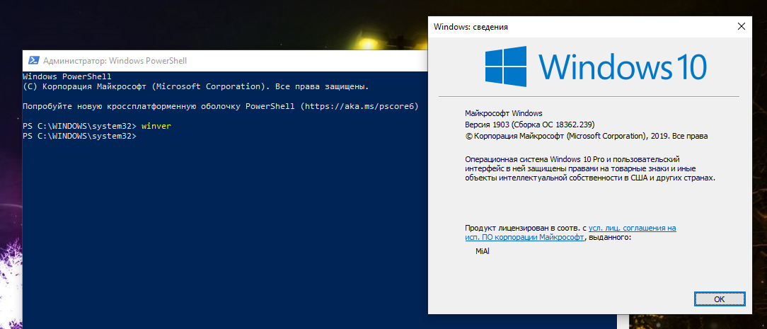 windows-5.png