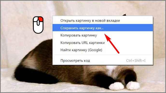 kak_sohraniti_kartinku_2.jpg
