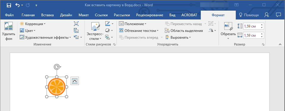 Vladka-Format-v-Word.png